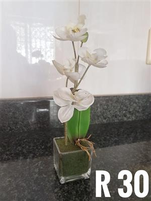 Decor white lily for sale