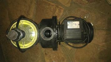 .75 kw Quality Pool pump