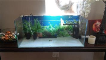 Complete 110 Liter Fish Tank *Good condition*
