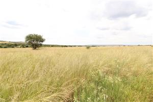 248 Ha Grazing Farm with Dairy, Water Bottling Plant, Gold and Diamond Exploration and many more extras