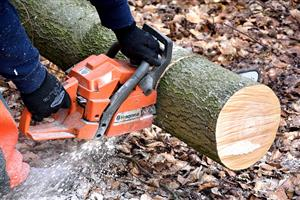 Kempton park Tree Felling and Site Clearings 0734421108