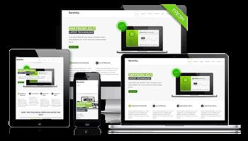 Business Website Special R1999.99 Including Free Hosting
