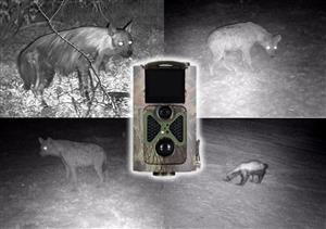 Motion sensor wildlife trail camera