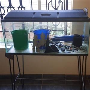 3ft 100L fish tank