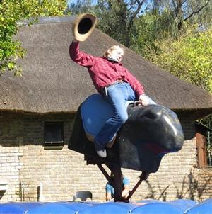 Mechanical Bull HIre