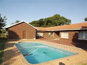 Smallholding with House, Flat & Pool To Let, Grootvlei