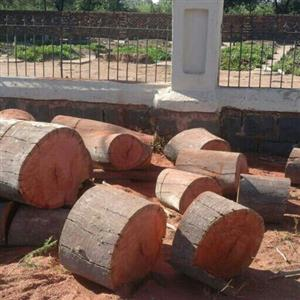 Boomsloping Pretoria/ Tree Felling Pretoria