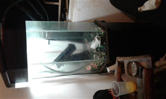 Fish tank, stand and lid with many extras