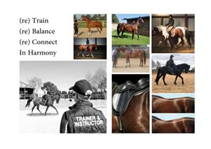Horsetraining instructor