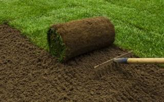 Instant lawn best quality and Compost,Topsoil, Lawn dressing available