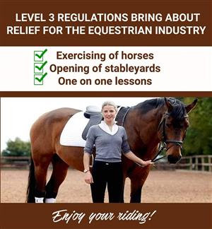WE ARE OPEN For RIDING LESSONS