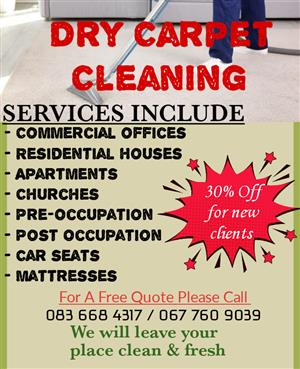 Professional Dry Carpet Cleaning Services