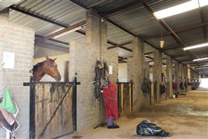 BENONI-24 Ha=- RACEHORSE FACILTY-GOING CONCERN-72 INDOOR STABLES-1.8 Km TRACK-2 HOUSES-ALSO REZONED!!