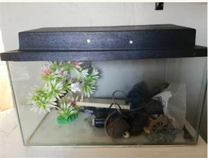 2 FOOT FISH TANK FOR SALE
