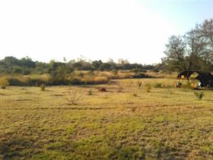 Small farm for sale near Marikana