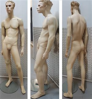 Male Display Mannequin For Sale