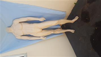 Co-Male Mannequin A (Chandler)