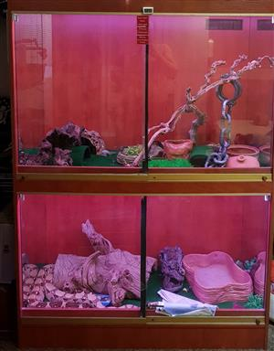 Snake enclosure