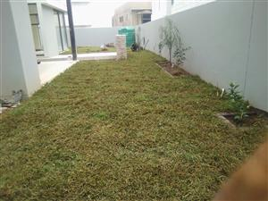 Instant lawn best quality all types supplied and installed.