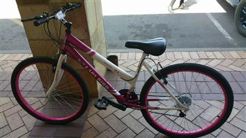 Ladies Lady Bird Bicycle