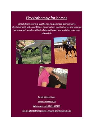 Physiotherapy and training for horses