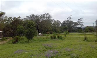 East London 4-Bed Farmhouse 24Ha To Rent @ R8,000 p/m (or For Sale)