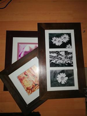 Framed floral pictures for sale