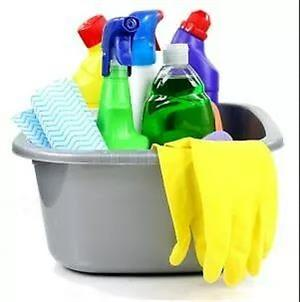PROFESSIONAL CLEANING SERVICE TEAMS FOR SALE