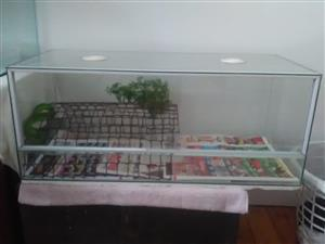 Snake & Cage for sale