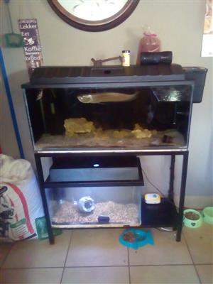 2 x Fishtanks with everything in it!