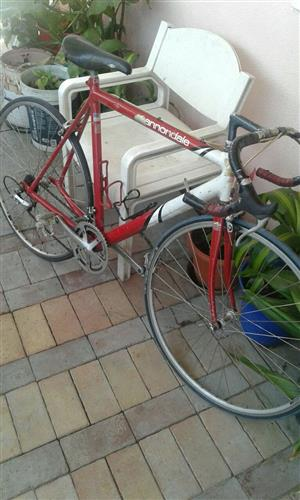 racer bike for sale