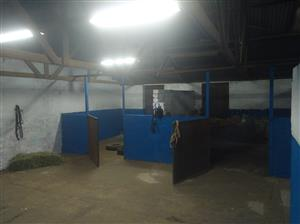 Eden Stables - livery available