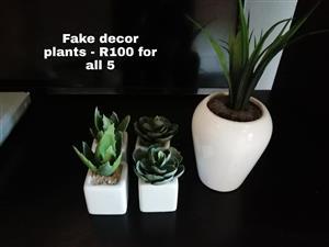 5 Fake decor plants.