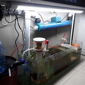 Marine tanks at a fraction of the price