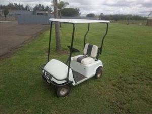 1  Seater Golf Cart