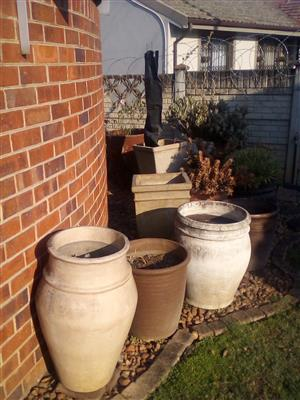 Large Pots and some pot plantd