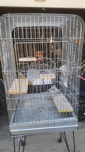 Voël hok/ Bird cage