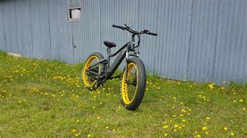 750W E-MTB (Electric mountain bike)