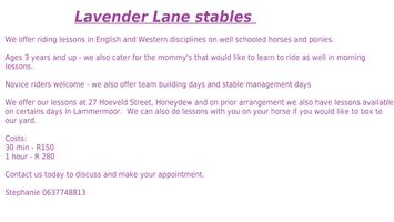 Horse riding lessons available in Honeydew