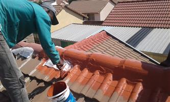 Waterproofing specialist and roof repairs.