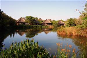 Ngwenya Lodge 21 to 28 Dec