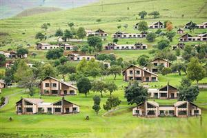 Alpine Heath Drakensberg