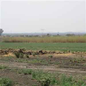 Irrigation vacant land.