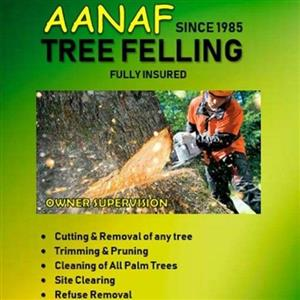 Tree Felling & Refuse Removal