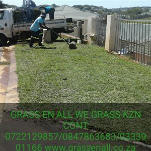 GRASS En ALL WE GRASS K.Z.N from 1sqmt to 1000s sqmts because we lay it the right way CONT0722129857