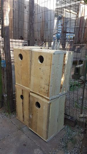Wood breeding boxes for parrots