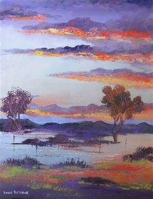 Sun  sets in the Karoo