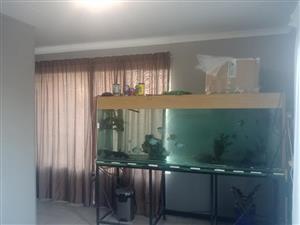 2m Fishtank