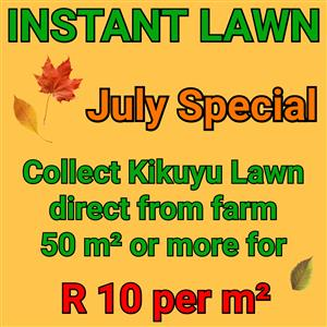 Instant Lawn -  *** SPECIAL *** - July