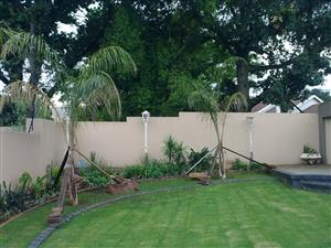 Studion Bachelor Pad  to rent/let Essexwold Bedfordview. Own separate entrance. Easy access to Airport Johannesberg Gauteng